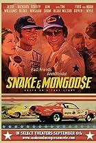 Image of Snake & Mongoose
