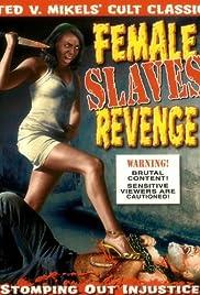 Apartheid Slave-Women's Justice Poster