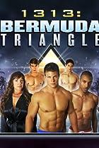 Image of 1313: Bermuda Triangle