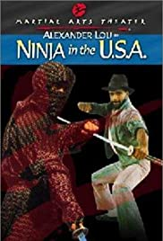 USA Ninja Poster