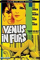 Image of Venus in Furs