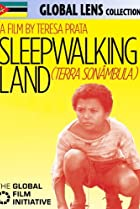 Image of Sleepwalking Land