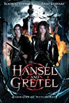 Hansel & Gretel: Warriors of Witchcraft (2013) Poster