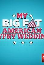 Primary image for Virgin Gypsy Brides