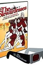 Image of The Stewardesses
