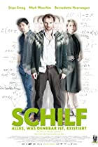 Image of Schilf