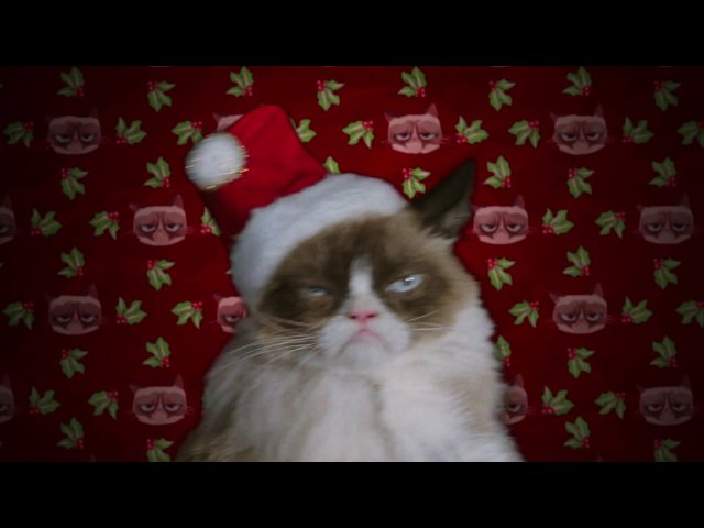 Grumpy cats worst christmas ever tv movie 2014 imdb thecheapjerseys Choice Image