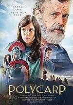 Polycarp(2015)