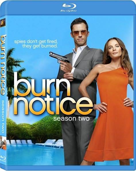 Gabrielle Anwar and Jeffrey Donovan in Burn Notice (2007)
