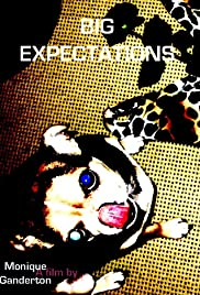 Big Expectations Poster