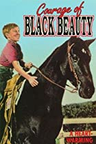 Image of Courage of Black Beauty