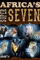 Image of Africa's Super Seven