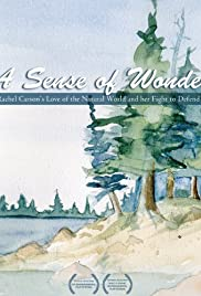 A Sense of Wonder Poster