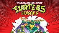 Return of the Turtleoid