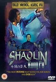 Shao Lin zhen gong fu Poster