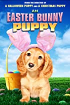 Image of An Easter Bunny Puppy