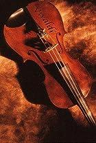 Image of Vivaldi