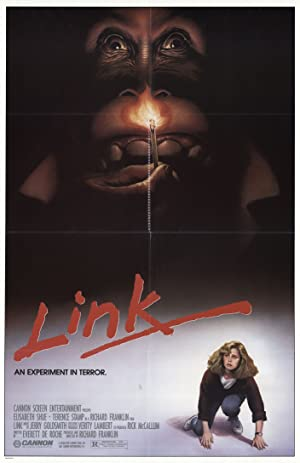 Link poster