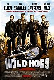 Wild Hogs (2007)
