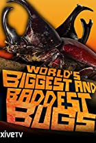 Image of World's Biggest and Baddest Bugs