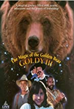 Primary image for The Magic of the Golden Bear: Goldy III