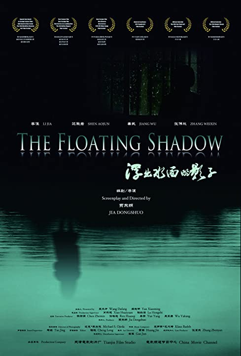 The Floating Shadow (2011)
