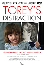 Torey's Distraction Poster