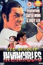 Image of Shaolin Invincibles