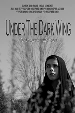 The Invoking 3: Paranormal Dimensions (2014)