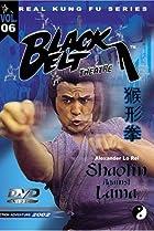 Image of Shaolin Temple Against Lama