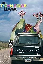 Technicolour Llama Poster
