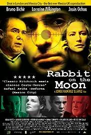 Conejo en la luna Poster