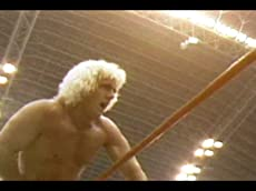 Pro Wrestling Illustrated: Lords of the Ring