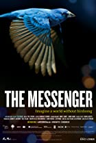 Image of The Messenger