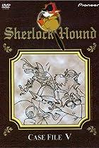 Image of Sherlock Hound