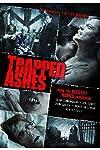 """Trapped Ashes"" creator to paralyze you with hospital horror ""P.O.V."""