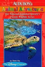 Audubon's Animal Adventures Poster