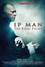 Ip Man The Final Fight(2013)