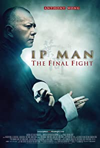 Ip Man: The Final Fight 2013 Poster