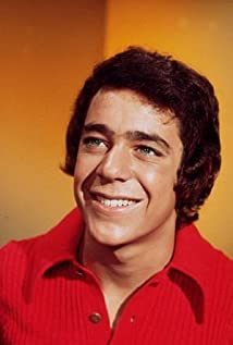 Barry Williams Picture