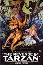 Image of The Revenge of Tarzan