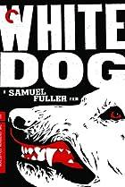 Image of White Dog