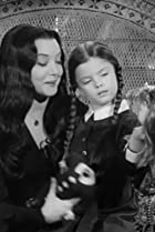 Image of The Addams Family: Morticia's Favorite Charity