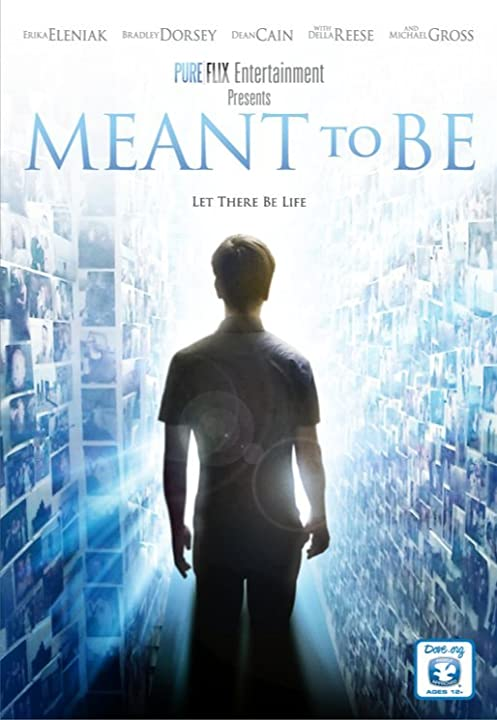Meant to Be (2012)