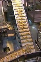Image of Modern Marvels: Corn