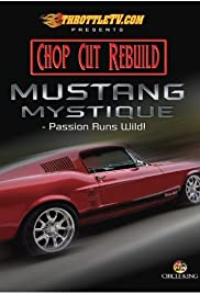 The Mustang Mystique Poster