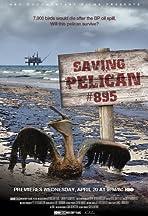 Saving Pelican 895