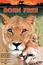Image of Born Free