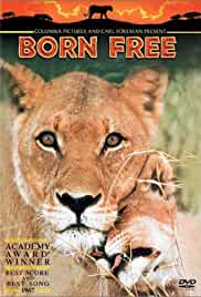 Born Free (1966) 720p BluRay x264 Eng Subs [Dual Audio] [Hindi 2.0 – English 2.0] Exclusive By -=!Dr.STAR!=- 1.0 GB