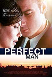 A Perfect Man (2013) Poster - Movie Forum, Cast, Reviews